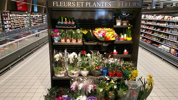 Mobilier fleur pour magasin